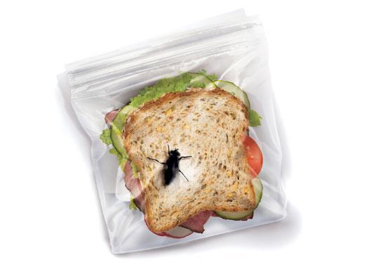 sandwich bag bug prank