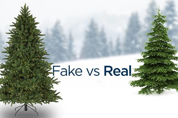 fake vs real christmas tree