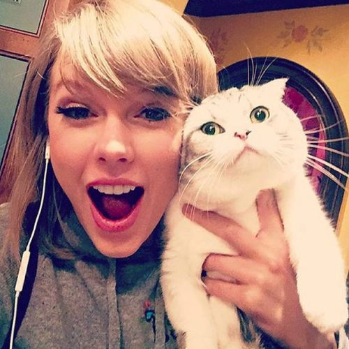 talylor swift instagram