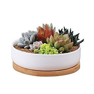 Binwen Modern Round Succulent Planter