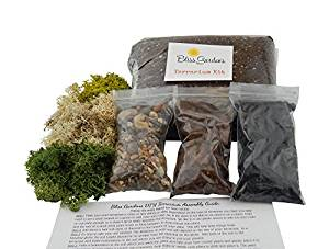 Bliss Gardens Terrarium Kit