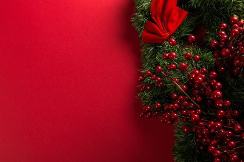 Red Cranberry Garland