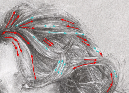 hair dsrawing tutorial