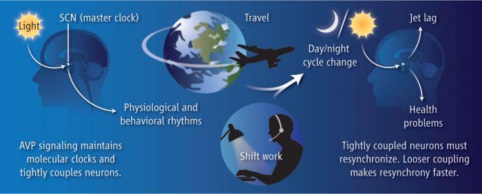 jet lag symptoms