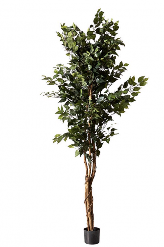 Nearly Natural 5209 Ficus Silk Tree, 6-Feet, Green