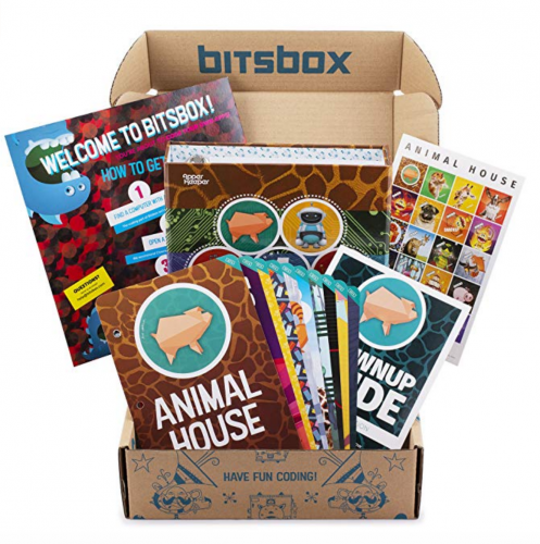 5. Bitsbox - Coding Subscription Box