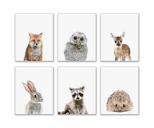 Crystal Baby Woodland Animals Poster Prints – Set of 6