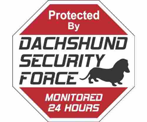 Dachshund Dog Yard Sign