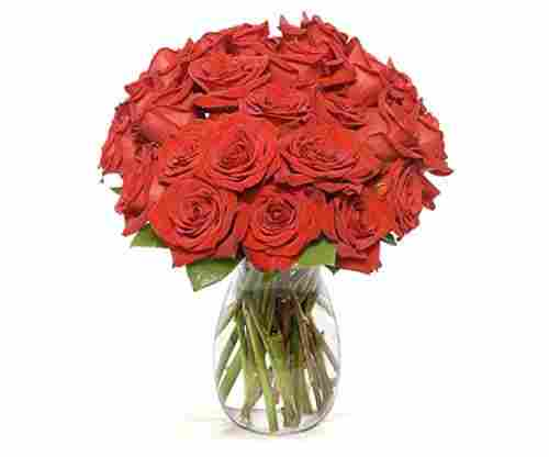 Red Roses Flower Bouquet by Benchmark