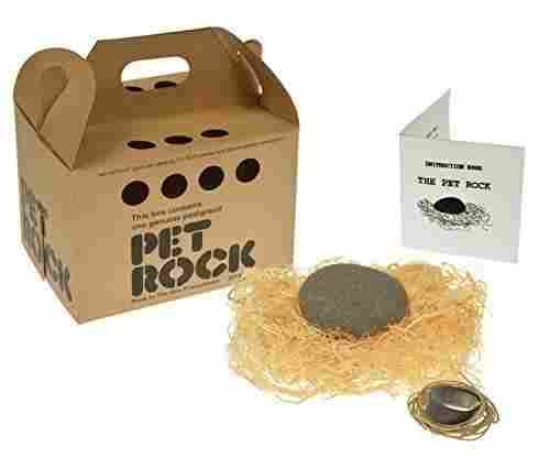 Rockinthebox Pet Rock with Walking Leash