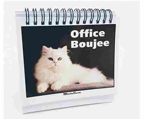 Office Gift for Cat Lovers – Moodycards! Office Boujee