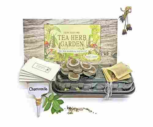 Grow and Make DIY Tea Herb Garden Kit – Learn The Basics of Herbalism