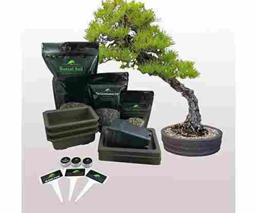 Planters' Choice Bonsai Starter Kit – The Complete Kit
