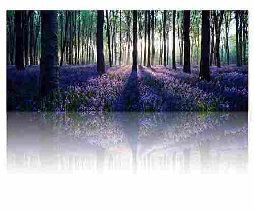 Large Size Lavender Canvas Wall Art with Frame
