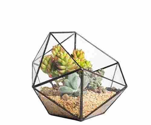 Geometric Glass Terrarium Succulent Planter