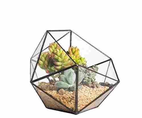 Geometric Glass Terrarium Succulent Planter