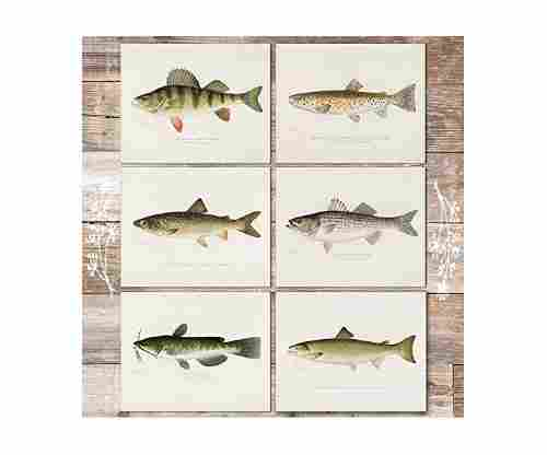 Fish Wall Art Prints (Set of 6)