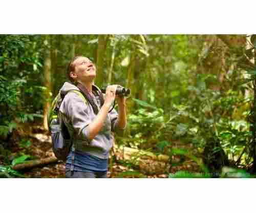 Best Bird Watching Binoculars Tested by Our Team of Bird Lovers