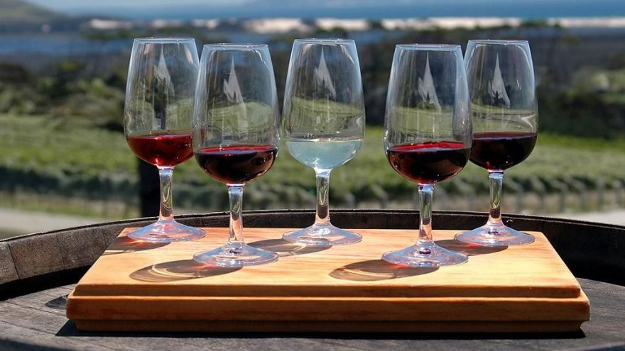 5 Wine Lover Tours We Recommend This Year!