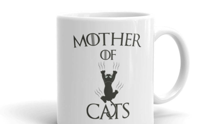 What All Cat Lovers Have In Common But May Not Know It!
