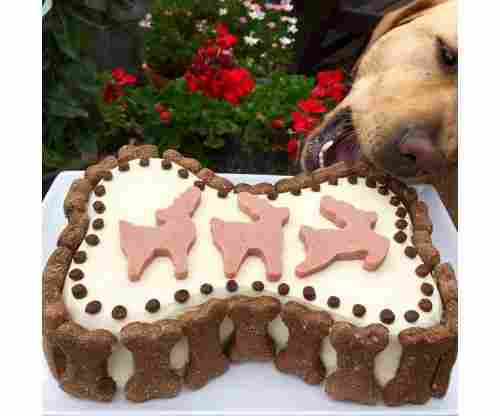 Dog Birthday Cake Recipes: Super Healthy Recipes that Your Dog will Devour!