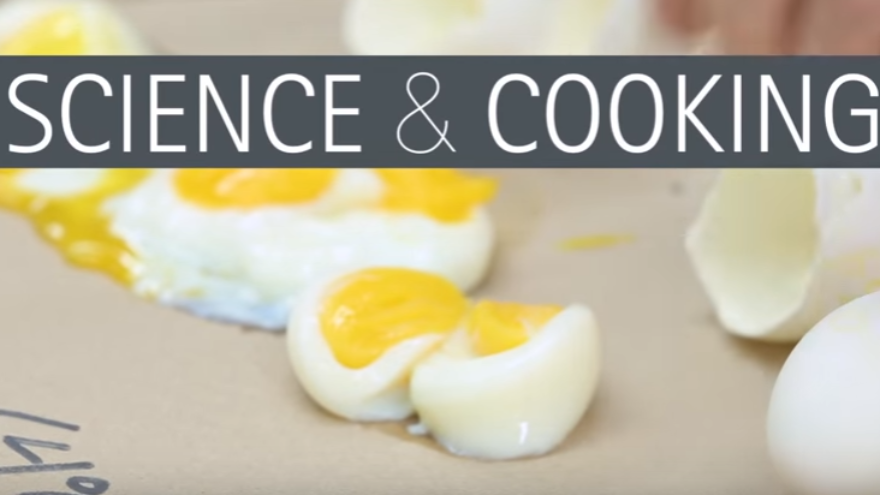 The Nerdy Cooking Tips and Facts that Will Amaze Kids