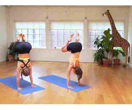 If You Want to Try Yoga, We Found 5 Online Classes We Tried, Tested, and Approved!
