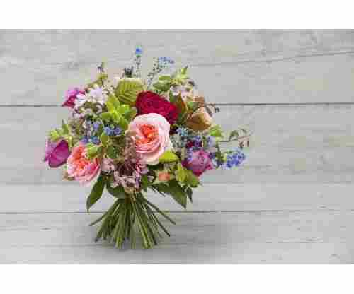 5 Awesome Sites to Buy Flowers From!